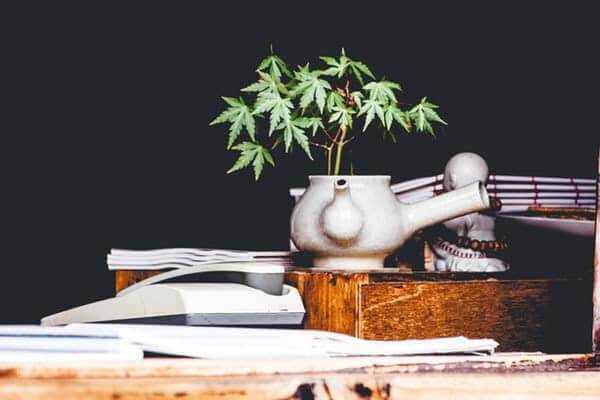 Lets Find Out How To Consume Cbd Oil   Which one is right for you?