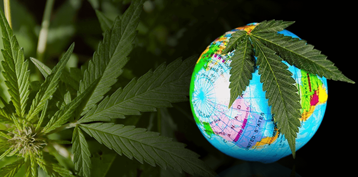 EU mum, but US opposes CBD exemption from global drug control